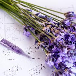 badania chemiczne z wykorzystaniem roślin